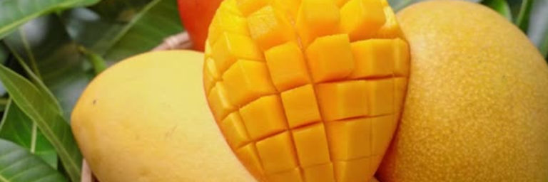 Read more about the article Mango pulp